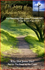 Story of Redemption Lesson 6